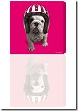 101-DoggyRiderRose_300x430