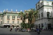 Naples (72)
