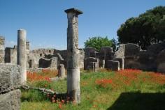 Pompéi (13)