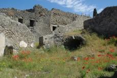 Pompéi (3)
