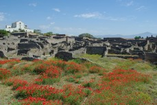 Pompéi (4)