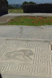 Pompéi (9)