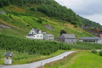 Norvège (113)