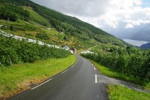Norvège (115)