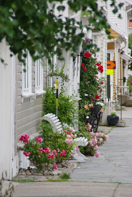 Norvège (13)